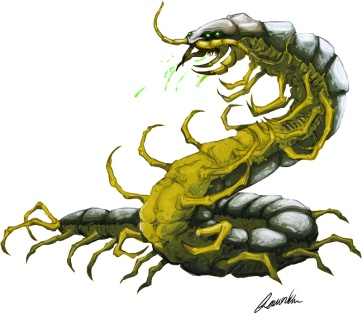 Giant-Centipede-smaller